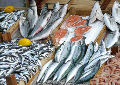 Bright Prospects for Chinese Sea Food Products Import and Export